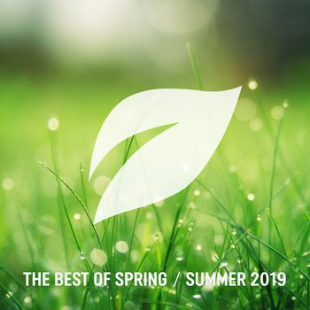 The Best of Spring / Summer 2019